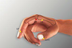 LI 2-Erjian acupoint