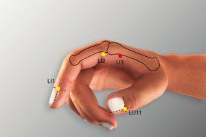 LI 3-Sanjian acupoint