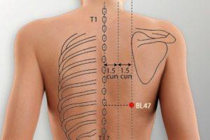 BL 47-Hunmen acupoint