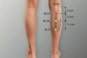 BL 55-Heyang acupoint
