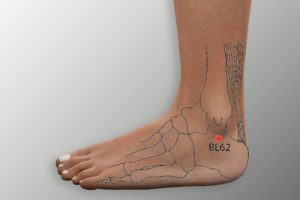 BL 62-Shenmai acupoint