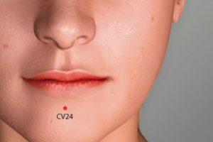CV 24-Chengjiang acupoint