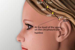 GB 4-Hanyan acupoint