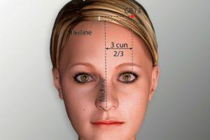 GB 13-Benshen acupoint