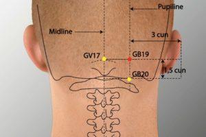 GB 19-Naokong acupoint
