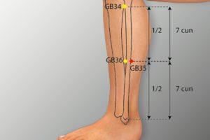 GB 35-Yangjiao acupoint