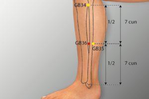 GB 36-Waiqiu acupoint