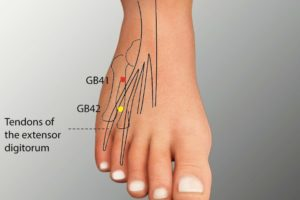 GB 41-Zulinqi acupoint