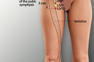 LIV 10-Wuli acupoint