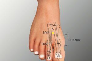 LIV 2-Xingjian acupoint