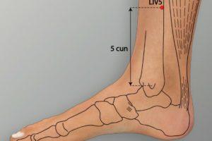 LIV 5-Ligou acupoint