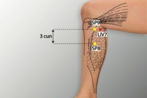 LIV 7-Xiguan acupoint