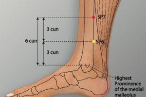 SP 7-Lougu acupoint