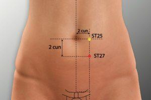 ST 27-Daju acupoint