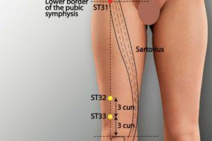 ST 31-Biguan acupoint