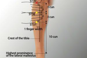 ST 35-Dubi acupoint