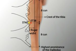 ST 38-Tiaokou acupoint