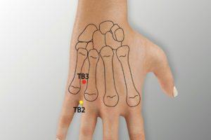 TB 3-Zhongzhu acupoint