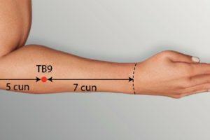 TB 9-Sidu acupoint